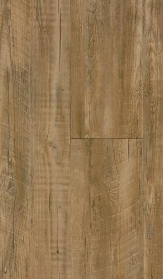 50LVP209 st andrews oak