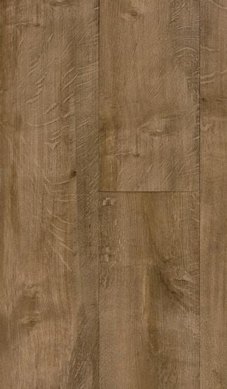 50LVP214 manitoba oak
