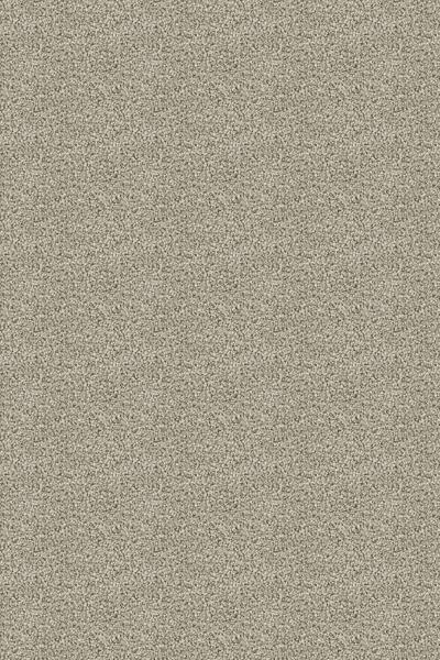 Lexmark Carpet Mesa Verde