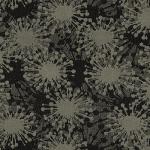 SG450_Meteorite_499