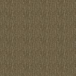 Sahara_309