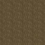 Sahara_710