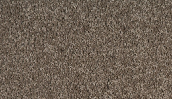 Godfrey Hirst Carpet Queenstwist Warehouse Carpets