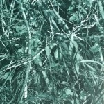 army-green-tile