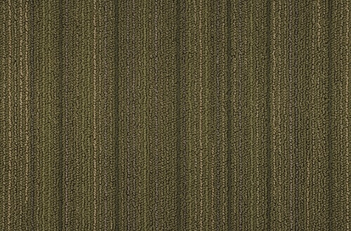 Bolyu Carpet Tile Momentum Warehouse Carpets