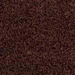 arizona sand 00796