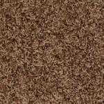 cinnamon swirl 00755