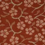 coral blush 00628