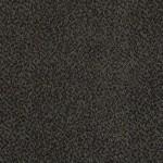 dark pewter 00548