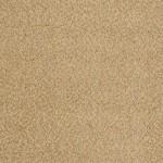 fine sand 00222