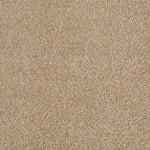 oak notes 00782