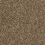 tawny taupe 00734