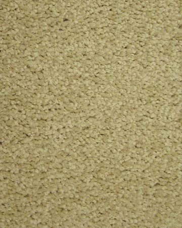 Bolyu Commercial Carpet Veranda Warehouse Carpets