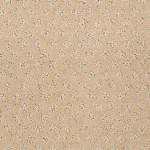 00122 parchment