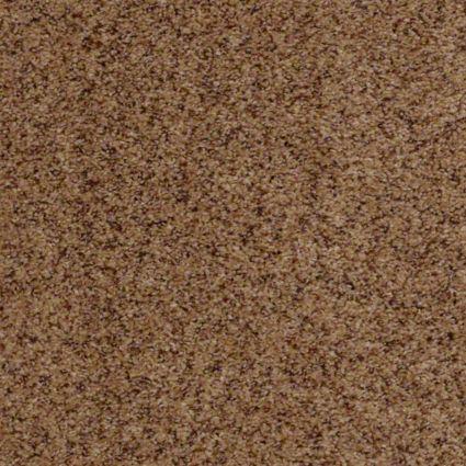 Tuftex Carpet Move On Up