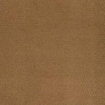 00276 butterscotch