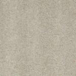 00515 gray whisper