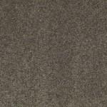 00539 charcoal