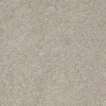 00541 silver leaf