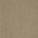 00572 neutral taupe