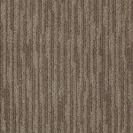 00572 simply taupe