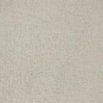 00572 wild dove