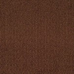 Tuftex Carpet These Dreams 00676 burnt sienna