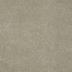 00701 dusty
