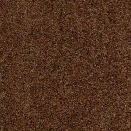 Tuftex Carpet Move On Up Warehouse Carpets