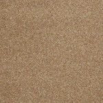 00752 taupe charm
