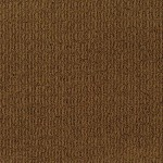 Tuftex Carpet These Dreams 00766 molten copper