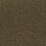 Tuftex Carpet These Dreams 00775 jamocha