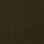 Tuftex Carpet These Dreams 00779 brown derby