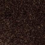 00779 cocoa quartz