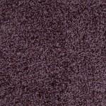 00957 wisteria