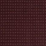 00968 wild grape