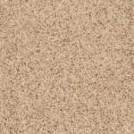 0214B Quicksand