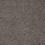 00500 bourbonnais grey
