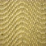 030 seagrass