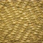 054 seagrass