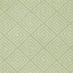208 lichen
