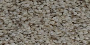 Trendy Threads I Warehouse Carpets