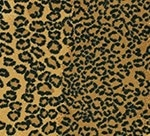 CAPE-TOWN-COLLECTION_CB79-0003_LEOPARD