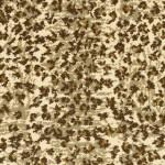 couristan capetown cheetah cheetah
