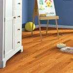 anderson solid bryson II4s plank room scene