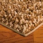 BigSur-rug