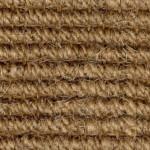 solomon coir