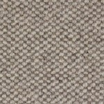 Laredo-2115 dapple gray