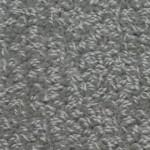 Signature-5980 dover gray