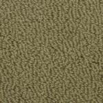 Somerset-5909 spring moss